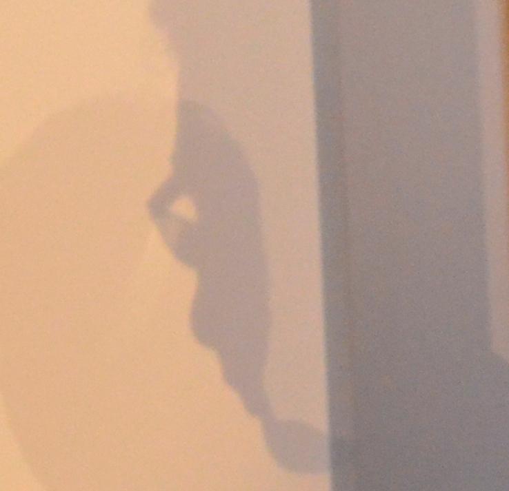 ombre profil
